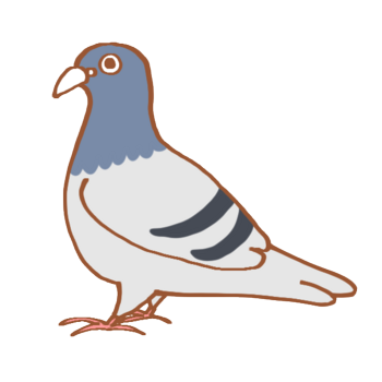illustrain02-bird16.png